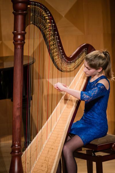 Concert in the Dreamforest by Merle van der Lijke (harp)